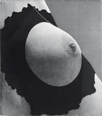 avantgarde.jpg